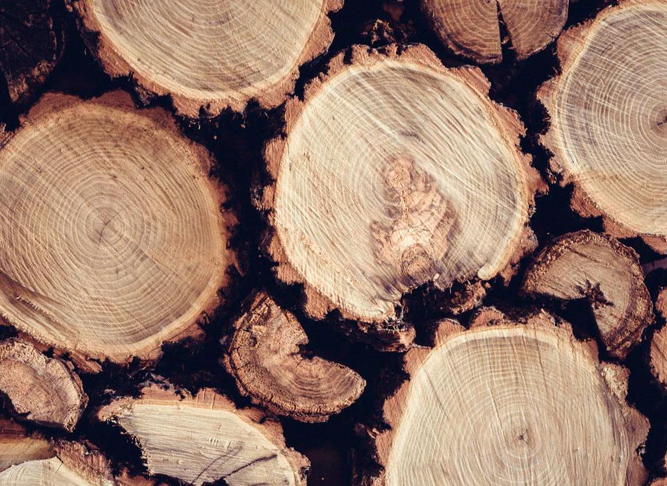 Filière bois et agricole